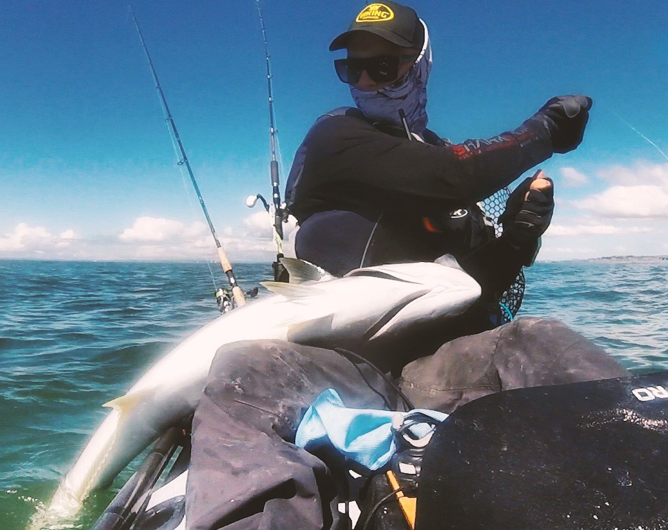 Kingfish from kayak nz